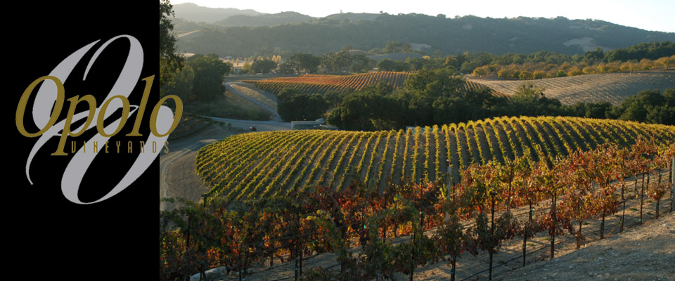 winery-of-the-week_Opolo