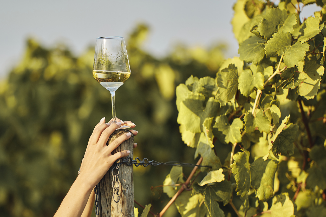 Blog Paso Robles Wineries Wine Tasting Guide And Map